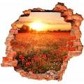 Wall-Art Wandtattoo »Mohnfeld im Sonnenuntergang«