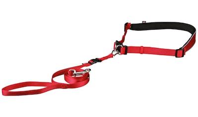 TRIXIE Hundeleine, mit Bauchgurt 60-130 cm, 1,2 Meter kaufen