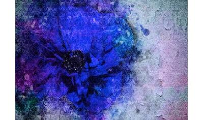 Consalnet Vliestapete »Blaue Vintage Blume«, floral kaufen