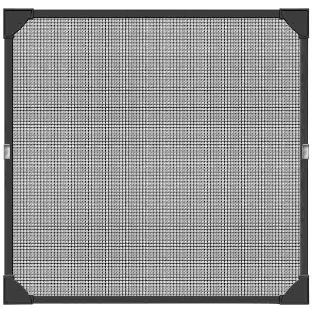SCHELLENBERG Insektenschutz-Fenster »Magnet«, BxH: 100x120 cm, anthrazit
