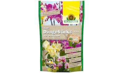 NEUDORFF Düngerstäbchen »Azet Orchideen«, 40 Sticks kaufen