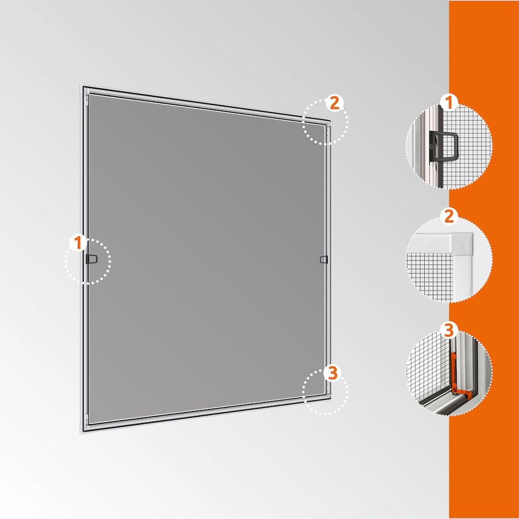 Windhager Insektenschutz-Fenster »Spannrahmen PLUS«, BxH: 100x120 cm