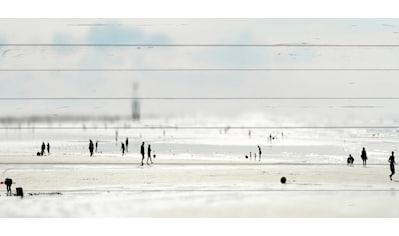 queence Holzbild »Miniatur Strand«, 40x80 cm kaufen