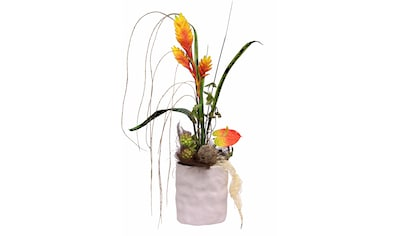 I.GE.A. Kunstpflanze »Anthurie« (1 Stück) kaufen