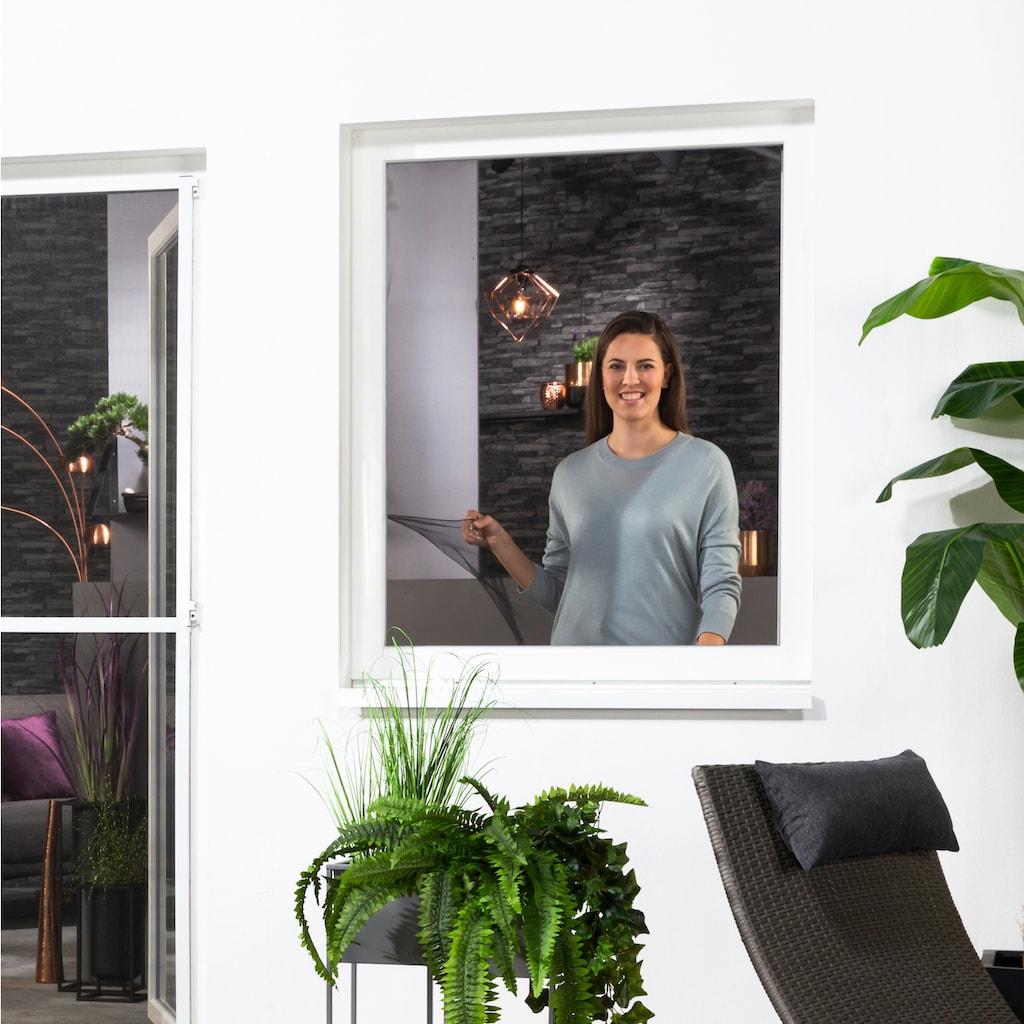 hecht international Insektenschutz-Fenster »Fliegengitter«
