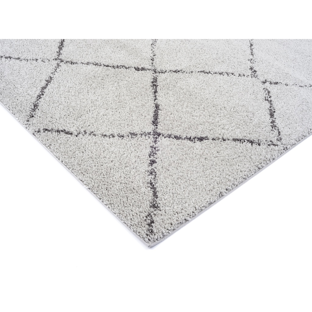 OCI DIE TEPPICHMARKE Hochflor-Teppich »Stockholm«, rechteckig, 30 mm Höhe, Wohnzimmer