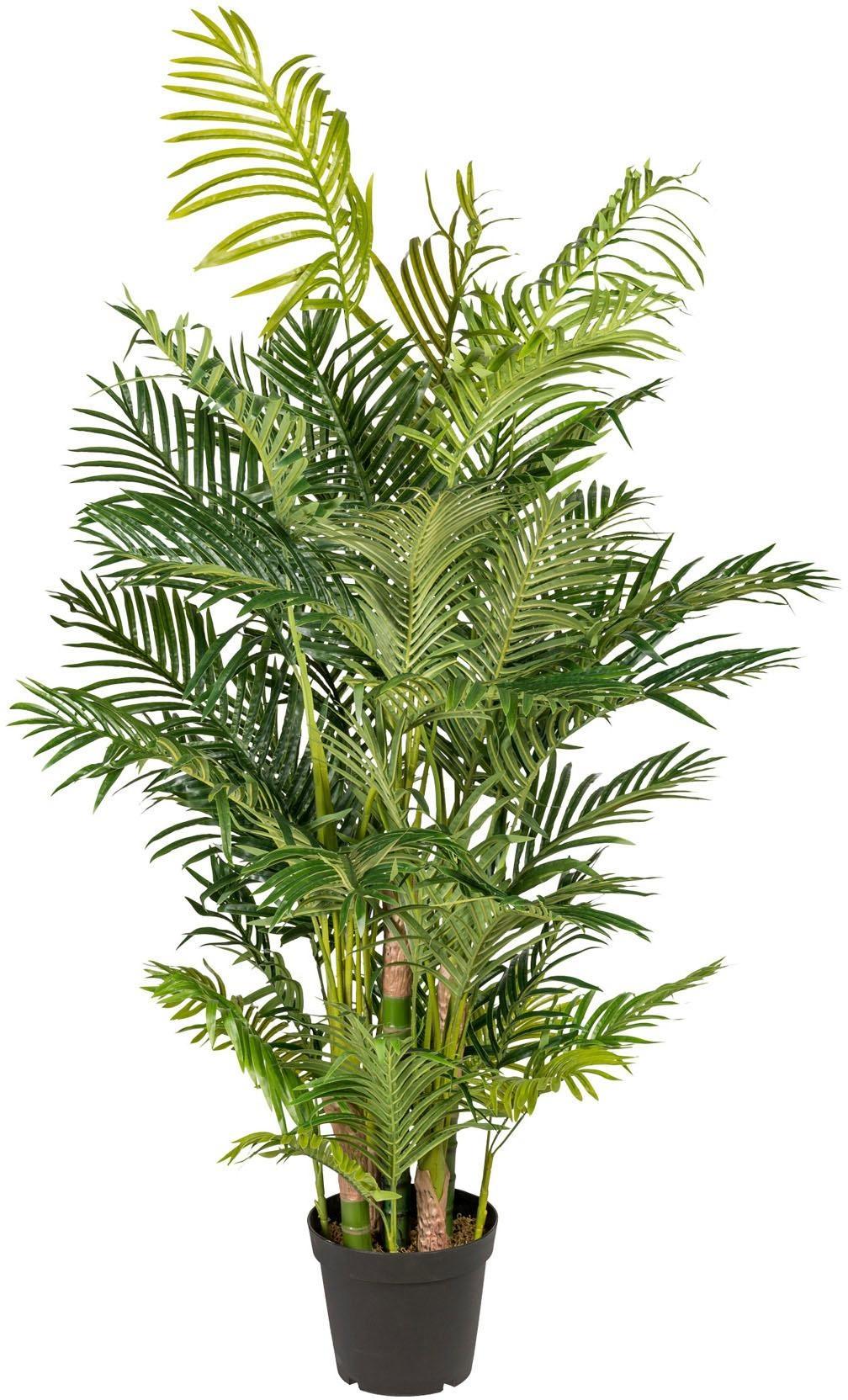 Kunstpflanze Arecapalme Wohnen/Möbel/Kleinmöbel/Kunstpflanzen/Kunstpalmen