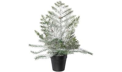 Creativ deco Künstlicher Weihnachtsbaum, Im Topf; Beschneite Optik kaufen