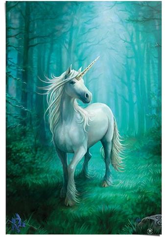 Reinders! Poster »Einhorn Anne Stokes - Wald - Magisch«, (1 St.) kaufen