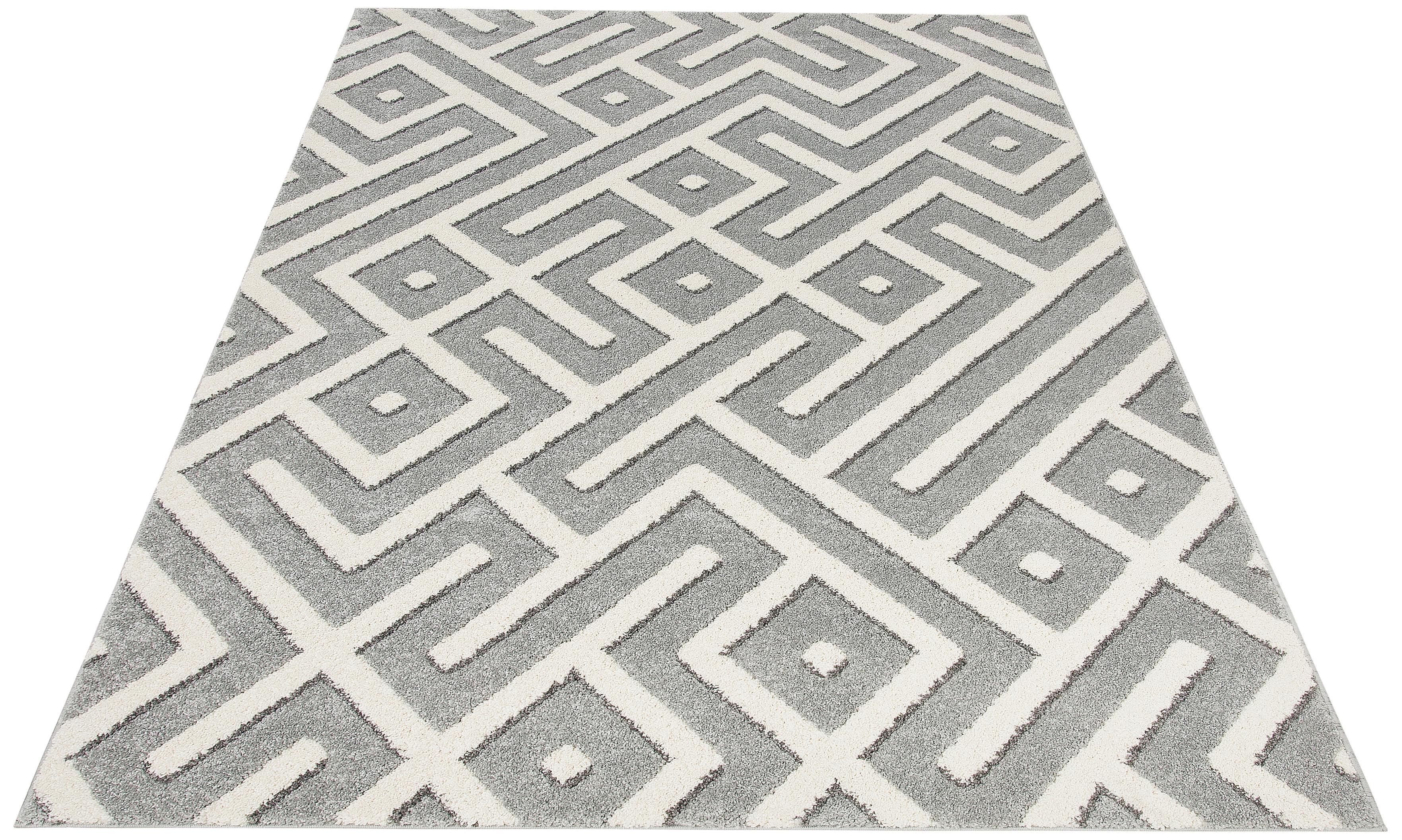 Teppich Dina my home rechteckig Höhe 20 mm