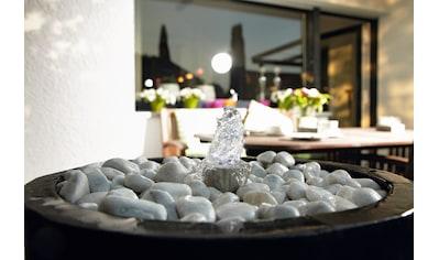 PONTEC Springbrunnenpumpe »PondoCompact 300i«, 300 l/h kaufen
