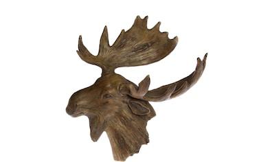 Dekogeweih »Elch« kaufen