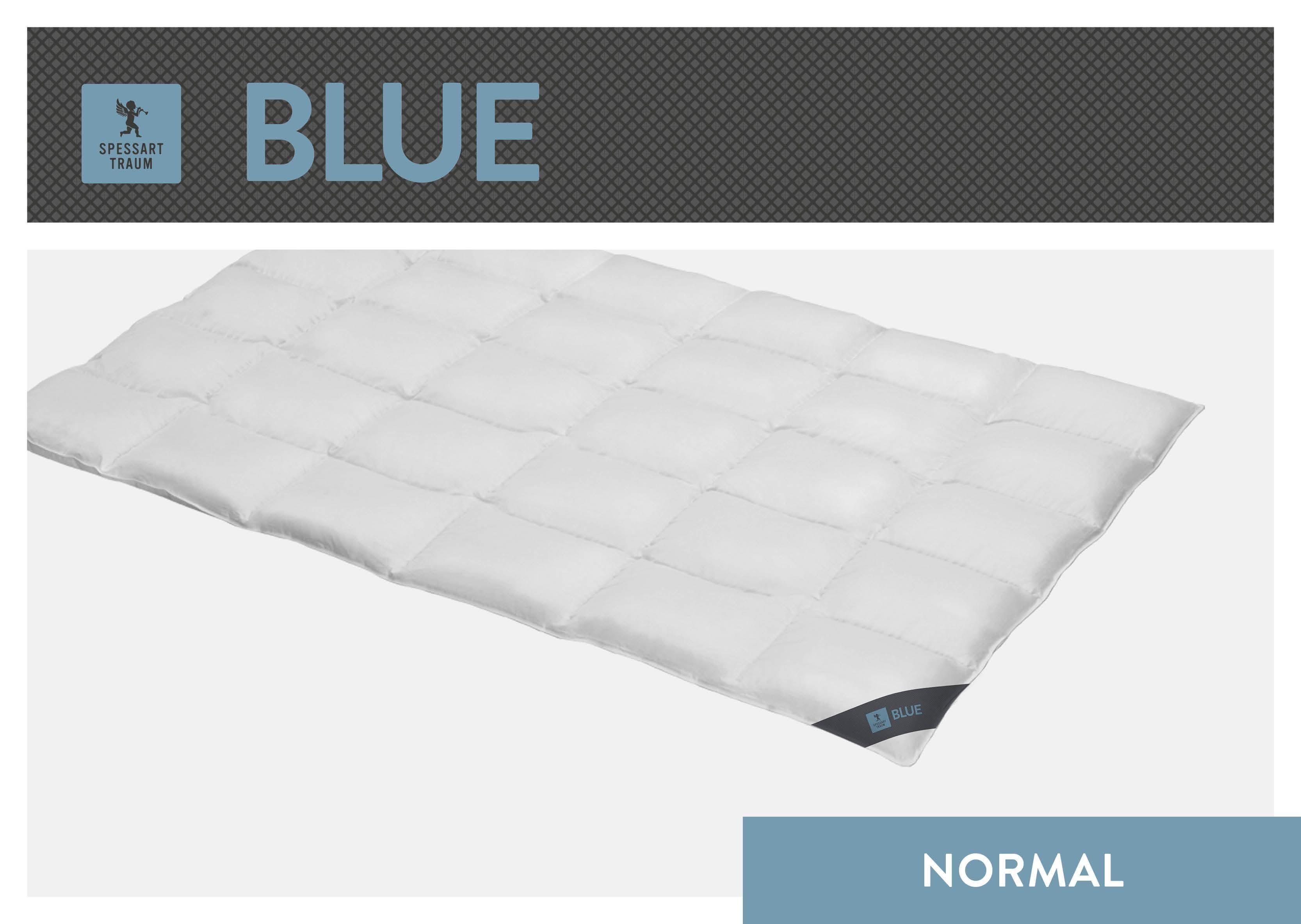 Daunenbettdecke Blue SPESSARTTRAUM normal Füllung: 60% Daunen 40% Federn Bezug: 100% Baumwolle
