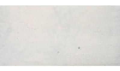 Slate Lite Wandpaneel »Ice Pearl«, aus Echtstein kaufen