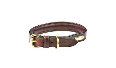 "WeatherBeeta Hunde - Halsband ""Leder Hundehalsband Gepolstert"", Textil kaufen"
