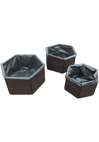 HANSE GARTENLAND Pflanzkübel »Hexagon«, versch. Größen kaufen