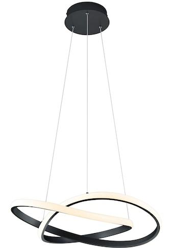 TRIO Leuchten,LED Pendelleuchte»LED - Pendel MIRA«, kaufen