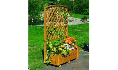 PROMADINO Holzspalier mit Pflanzkasten, BxT: 91x41 cm, versch. Höhen kaufen