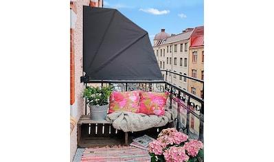 QUICK STAR Sichtschutzfächer BxH: 115x115 cm kaufen