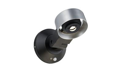 Paulmann,LED Außen - Wandleuchte»Cone 8W Silber/Anthrazit mit Bewegungsmelder schwenkbar«, kaufen