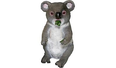 Casa Collection by Jänig Tierfigur, Koala frisst Blätter, Höhe: 22 cm kaufen