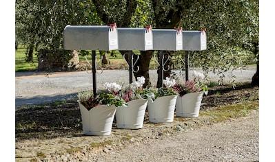 BAMA Blumentopf »Tulipano«, ØxH: 33x32 cm, weiß kaufen