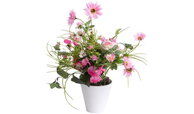 Botanic-Haus Kunstblume »Sommerblumen« kaufen