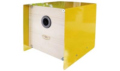 Habau Nistkasten »Cube«, BxTxH: 20x20x20 cm kaufen