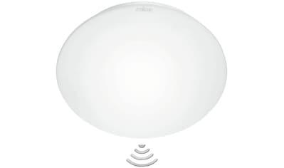 STEINEL Innensensorlampe »RS 16 L« kaufen