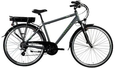 Zündapp E-Bike »Z802 Herren«, 21 Gang, Shimano, Altus RD-M310, Heckmotor 250 W kaufen