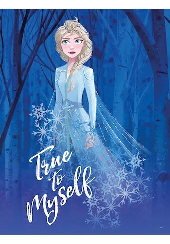 KOMAR Wanddekoration »Frozen 2 Elsa true to myself«, ohne Rahmen kaufen
