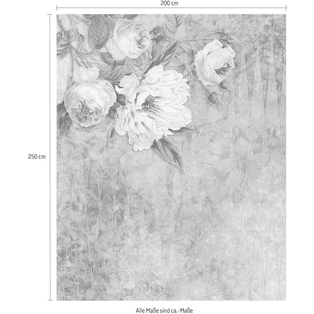 Komar Vliestapete »Pure La Rosa«, naturalistisch
