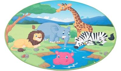 Böing Carpet Kinderteppich »Wasserstelle«, rund, 4 mm Höhe, bedruckt, Motiv Zootiere, waschbar kaufen