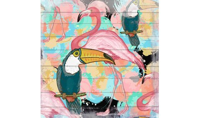 QUEENCE Holzbild »Flamingo und Tucan«, 40x40 cm Echtholz kaufen
