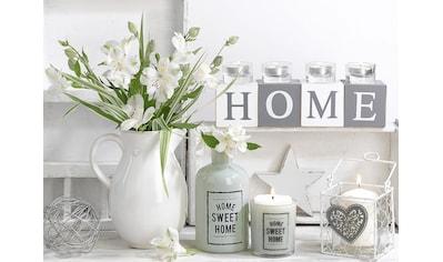 Art for the home Leinwandbild »Stillleben Home«, Pflanzen kaufen