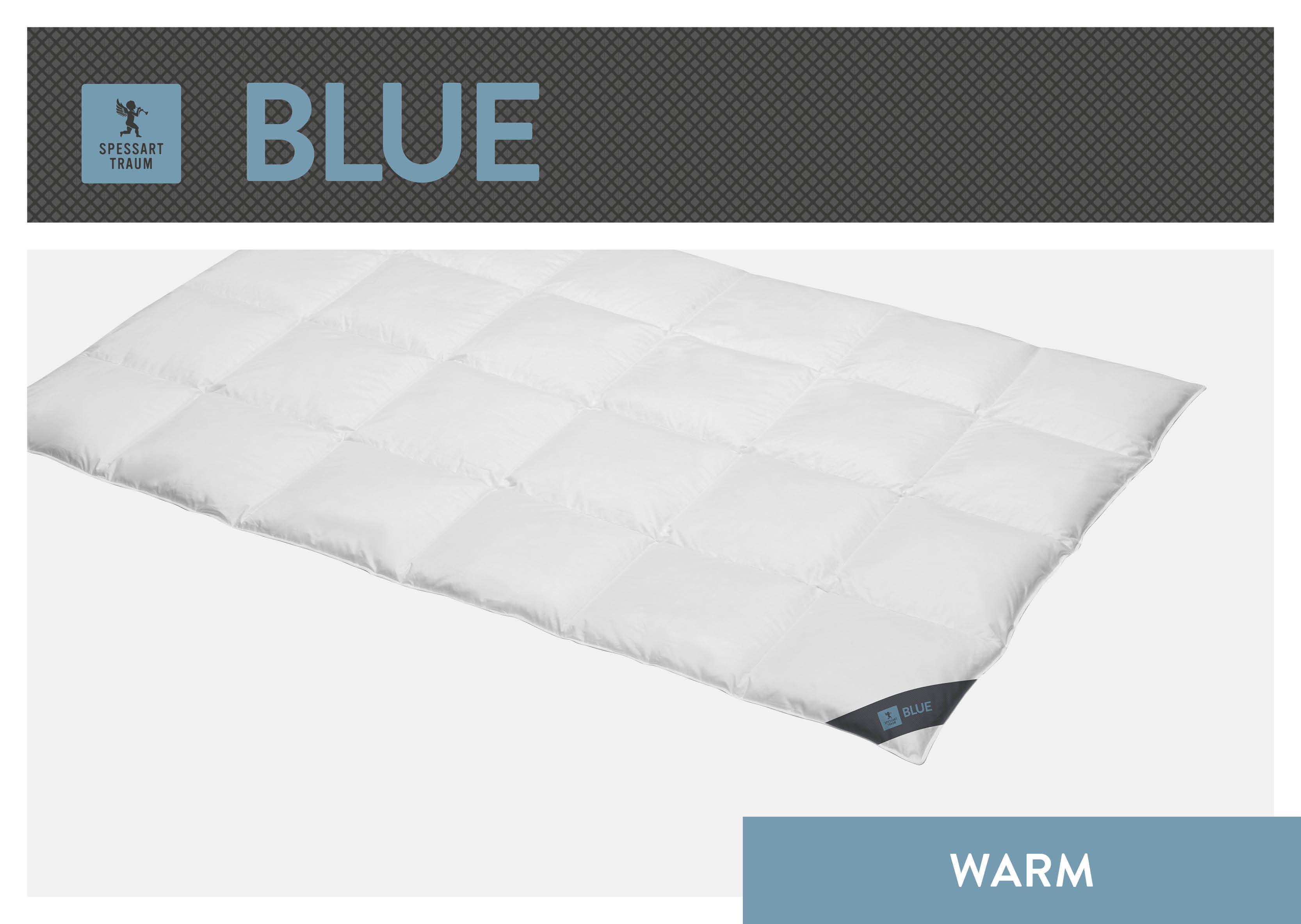 Daunenbettdecke Blue SPESSARTTRAUM warm Füllung: 60% Daunen 40% Federn Bezug: 100% Baumwolle