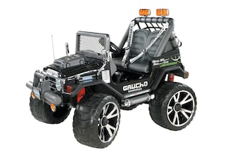 peg perego elektro kinderquad gaucho superpower 24 volt auf rechnung. Black Bedroom Furniture Sets. Home Design Ideas