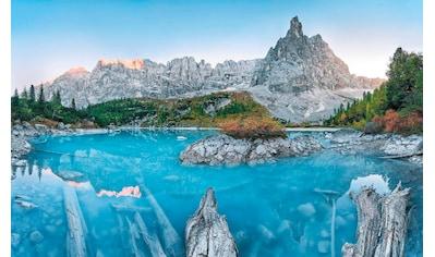 Komar Vliestapete »Alpine Treasure«, naturalistisch kaufen