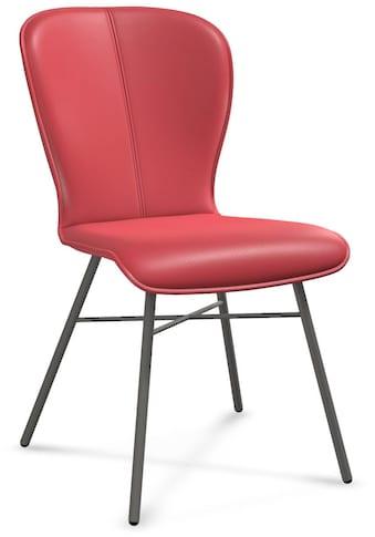 bert plantagie Stuhl »BLAKE FOUR 612A«, 2-Set in Leder, Gestell aus Metall in anthrazit kaufen