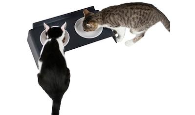 LUCYBALU Futternapf »Katzen Futterstation DINE«, BxT: 40x20 cm, 250 ml kaufen