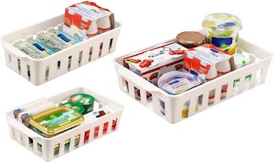 Ruco Aufbewahrungskorb, (Set, 6 St.), für den Kühlschrank, Kunststoff kaufen
