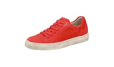 SIOUX Sneaker »Tils sneaker-D 001« kaufen