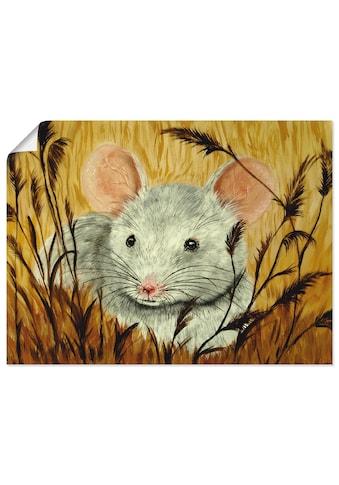 Artland Wandbild »Maus«, Haustiere, (1 St.), in vielen Größen & Produktarten - Alubild... kaufen