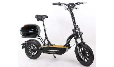 "Didi THURAU Edition E - Scooter »Elektroroller ""Eco - Tourer Speed"" 45 km/h Safety Plus«, 1200 Watt, 45 km/h kaufen"