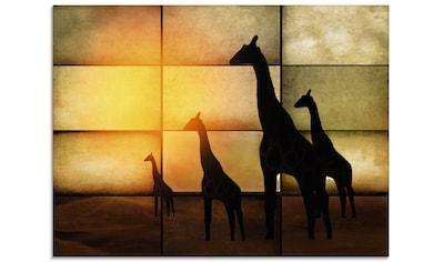 Artland Glasbild »Giraffen«, Wildtiere, (1 St.) kaufen