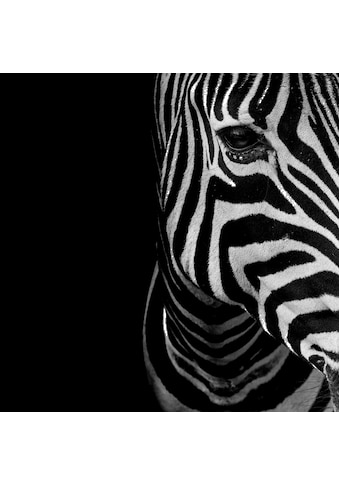Home affaire Deco - Panel »Zebra Auge« kaufen