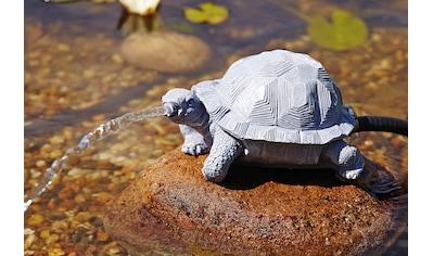 OASE Wasserspeier »Schildkröte« kaufen