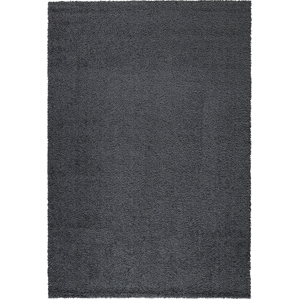Festival Hochflor-Teppich »Delgardo K11501«, rechteckig, 30 mm Höhe, Besonders weich durch Microfaser, Wohnzimmer