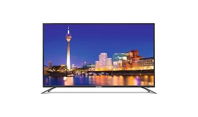 "TechniSat 124 cm (49"" Zoll) UHD 4K Fernseher/Monitor (HDR10, Eco, 3x HDMI) kaufen"