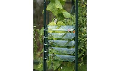 Vitavia Fenster »Lamellenfenster«, grün, BxH: 61x45 cm kaufen